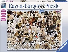 cat dog rabbit puzzle