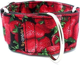 candyPet Collar Martingale para Perros - Modelo Fresas (L: Ancho 5 cm (30-50 cm diámetro))