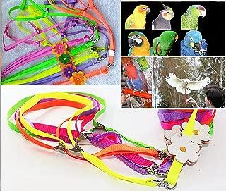 Beauty Parrot Adjustable Bird Harness and Leash Anti-bite for Bird Parrot African Grey Cockatoo Macaw Ringneck for Medium Size Bird (1Pcs Random Color)