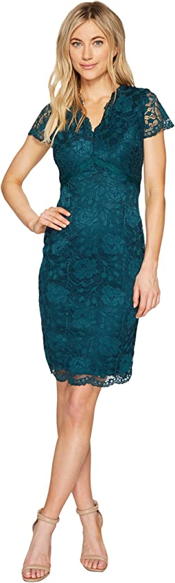 Lace Dress with Short Sleeves and V-Neck