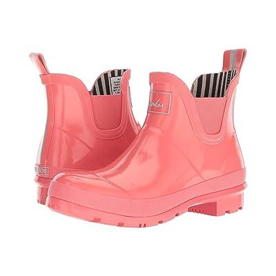 Joules Wellibob Chelsea Boot (Red Sky Rubber) Women