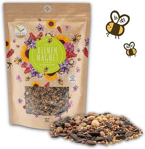 500g Graines de prairie fleurie pour un pâturage d'abeilles coloré - mélange de graines de fleurs sauvages pour abeil...