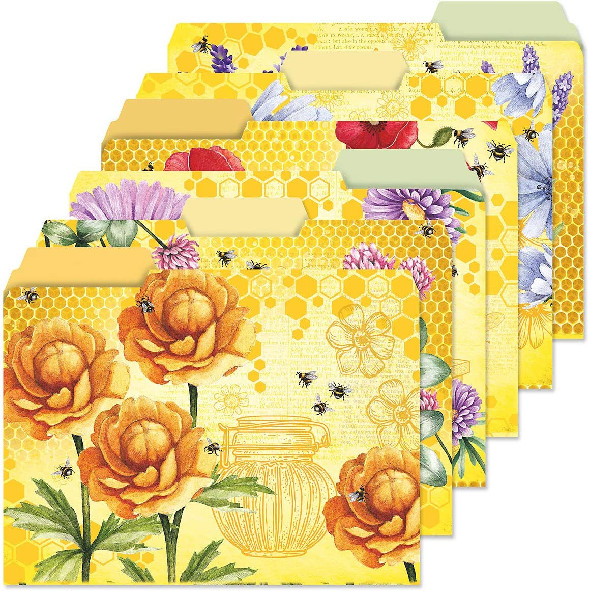 Bee Friends File Folders Value Pack - 6 of Set Designs Ranking TOP15 1 Topics on TV 3 24
