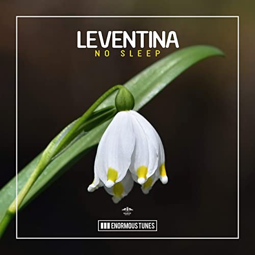 Leventina - No Sleep [2019]