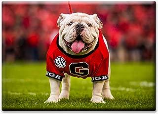 UGA Georgia Bulldogs Magnet for Fridge - UGA X Mascot 2.5