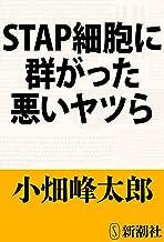 表紙: STAP細胞に群がった悪いヤツら   小畑 峰太郎