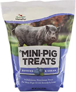 Manna Pro Mini Pig Treats, Berry & Cream Flavor