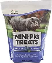 Manna Pro Mini Pig Treats, Berry & Cream Flavor