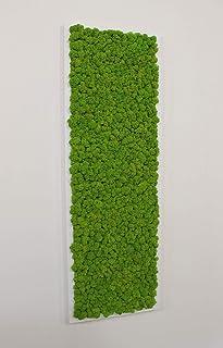 Quadro Vegetale - 90 x 30 cm - Verde 15 - Cornice bianca
