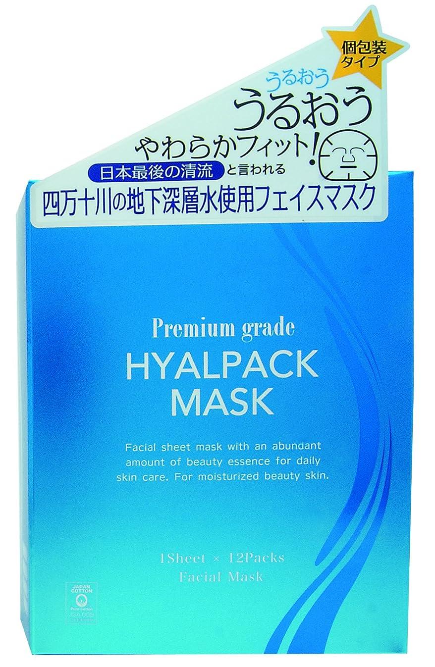 フレームワーク分析する鼻プレミアムグレードヒアルパックマスク12枚