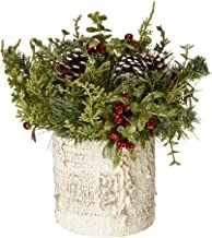 G Ganz Christmas - Light Up Mistletoe Birch Tree Container 9 inches