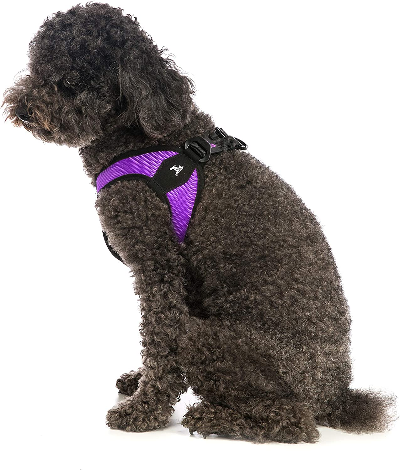 Gooby  Escape Free Easy Fit Harness, Small Dog Stepin Harness for Dogs That Like to Escape Their Harness, Purple, Medium