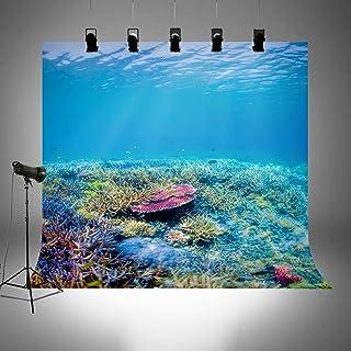 Unterwasserwelt Fotohintergründe für Sommerpartys Bilder Tauchurlaub Themen Fotografie Hintergrund Untersee Photobooth Tapete FT3919