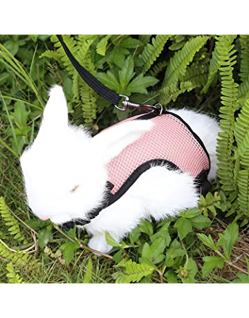 Imbracatura Coniglietto Petto Guinzaglio Furetto Animali Domestici Accessori da Passeggio Gilet e Set guinzagli Compagnia Vvciic Imbracatura per Conigli di Criceto