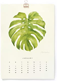 """The Silence of Plants"" Art Print - 2020 Wall Calendar - A4 (8.3 x 11.7 inch) - Christmas Gift Featuring Botanical Painting in Watercolor - Green Leaf Two"