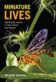 Miniature Lives: Identifying Insects in Your Home and Garden
