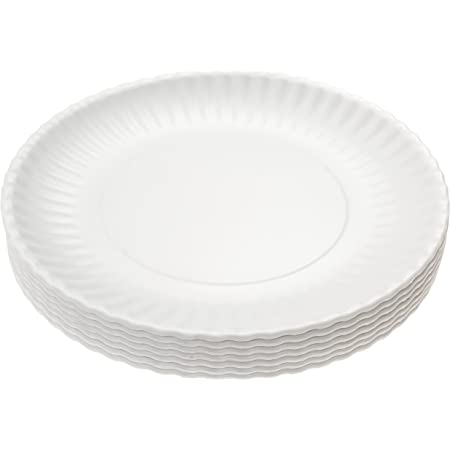 Picnique Reusable Paper Plates 9 Inch Melamine Plates For Dinner Outdoor Kitchen Rv Camping Or As Everyday Party Plates Dishwasher Safe Set Of 6 Dinner Plates