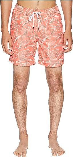 Tangerine/Coral