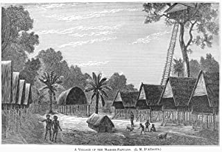 New Guinea Village 1880 Na Village Of Stilt Houses In The Mahori-Papuan Region Of Eastern New Guinea Wood Engraving From N...