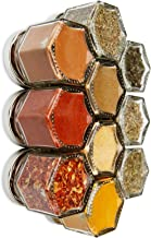 PANTRY BASICS | Ten Organic Starter Spices in Gneiss Spice Small Magnetic Jars for Fridge | Graduation Gift Kit (10 Jars, Silver Lids)