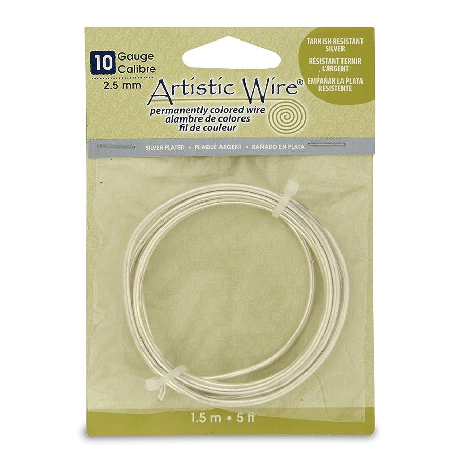 Artistic Wire 10S Gauge Wire, Tarn Resist Silver, 5-Feet