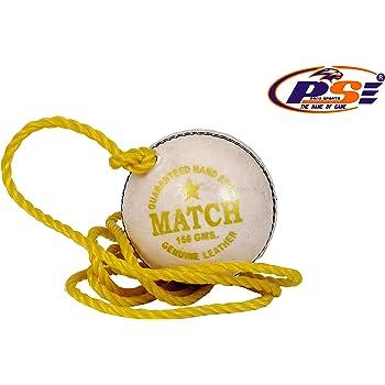 PSE Priya Sports PriyaSports_23 Leather Cricket Ball (White)