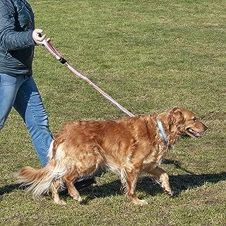 rubber stretchy dog leash