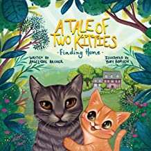 A Tale of Two Kitties: Finding Home