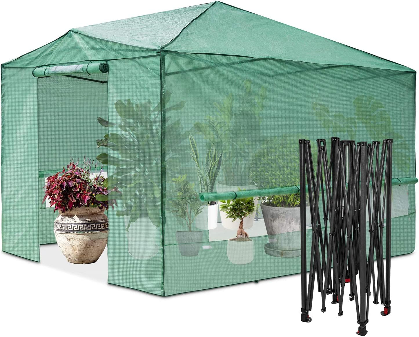 EAGLE PEAK 12'x8' Portable Large Walk-in Greenhouse Instant Pop-up Fast Setup Indoor Outdoor Plant Gardening Green House Canopy, Front Roll-Up Zipper Entry Doors and Roll-Up Side Windows