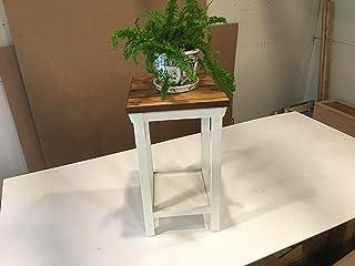 Amazon com: house plants - $100 to $200: Handmade Products
