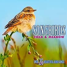 Songbirds: Field & Meadow - Over 25 Beautiful Bird Songs & Sounds