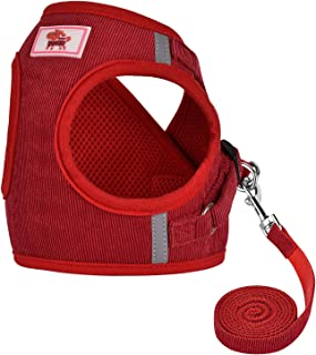GAUTERF Dog and Cat Universal Harness with Leash Set, Escape Proof Cat Harnesses - Adjustable Reflective Soft Mesh Corduro...