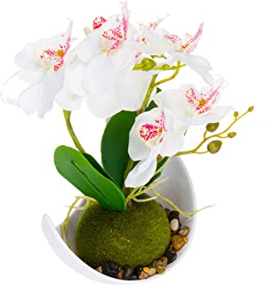 Modern Artificial Flower Decoration, Synthetic Orchids w/Sleek Curved Planter, White