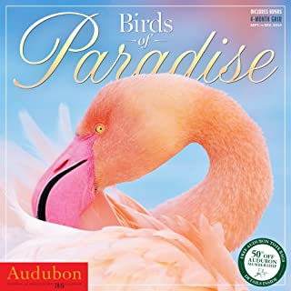 Audubon Birds of Paradise Wall Calendar 2015