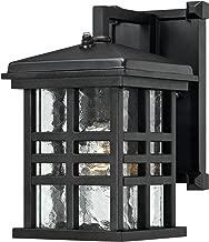 Westinghouse Lighting 6204500 Caliste 1 Light Outdoor Wall Lantern with Dusk to Dawn Sensor, Textured Black,