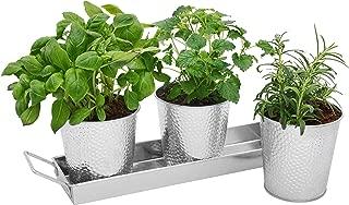 Windowsill Herb Planter Pots - Set of 3 Indoor Galvanized Planters and Tray