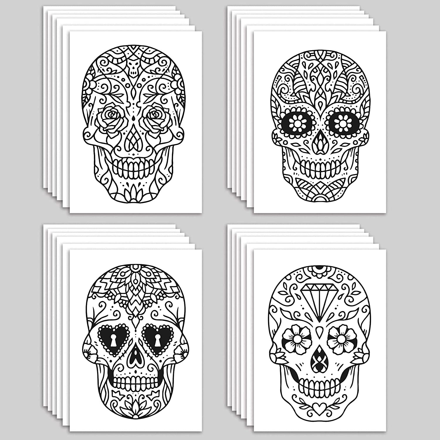 Halloween Sale Special Price New Shipping Free Shipping Beautiful Skulls Greeting Cards Env + - 24 Blank