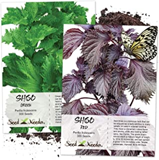 Seed Needs, Shiso Seed Collection (2 Individual Packets) Non-GMO