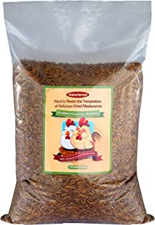 11lbs Bulk Dried Mealworms for Reptile, Tortoise ; Amphibian,Lizard ;Wild Birds; Chichens; Duck etc