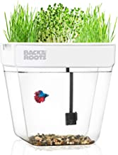 Back to the Roots Water Garden, Self-Cleaning Fish Tank That Grows Food, Mini Aquaponic Ecosystem (Great Gardening Gift & ...