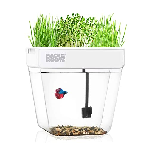 Back to the Roots Water Garden, Self-Cleaning Fish Tank That Grows Food,