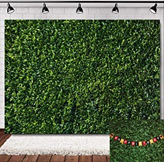 Best 3d wallpaper nature green Reviews