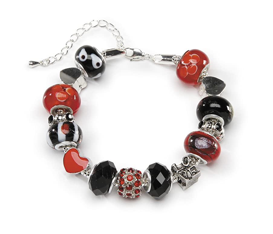 DARICE 1999-5283 Mix and Mingle Starter Jewelery Making Kit with Bracelet and Beads Love