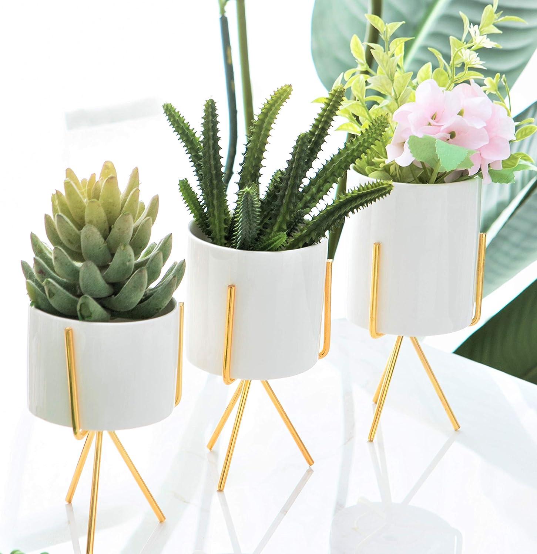 Small Succulent Pots Tampa Mall - 3 Pack White 3.2 Decorative Set Inch 2021 model F