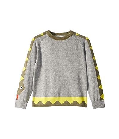 Stella McCartney Kids Snake Sweater Early (Toddler/Little Kids/Big Kids) (Grey) Boy