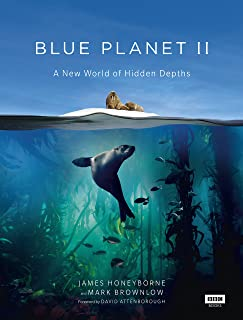 deep blue aquatics