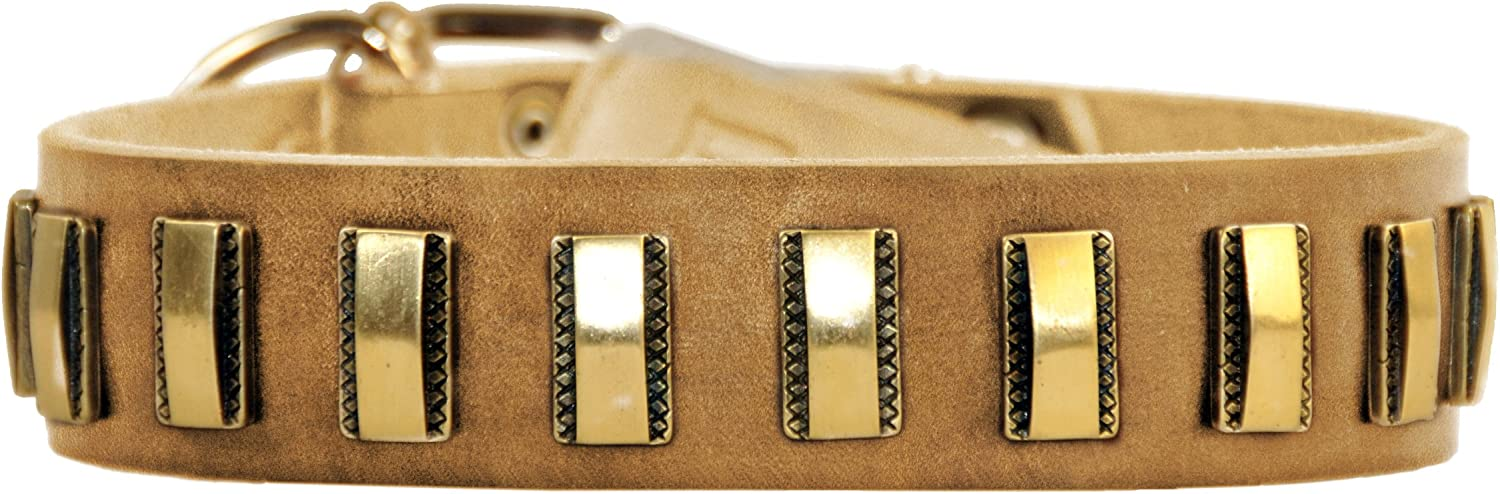 Dean and Tyler BRASS LINE , 2011 Leather Dog Collar with Solid Brass Plates  Tan  Size 20Inch by 11 2Inch  Fits Neck 18Inch to 22Inch