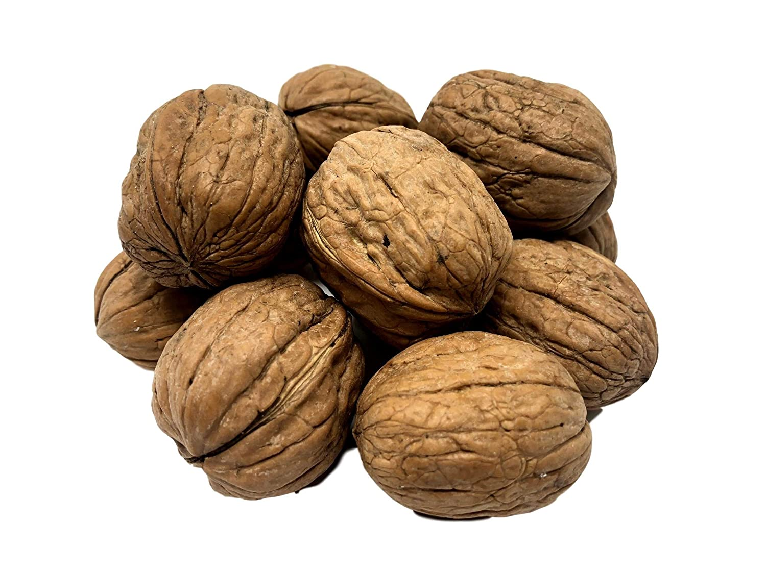 NUTS U.S. - Walnuts In Shell California Grown Topics OFFicial mail order on TV and Packed in