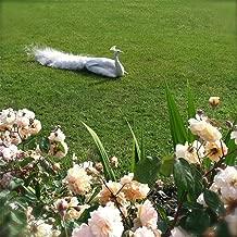 Secret Rose Garden (Instrumental Version)
