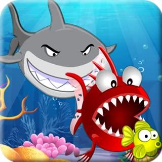Hungry Piranha Fish